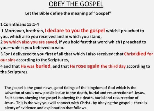 obey the gospel y