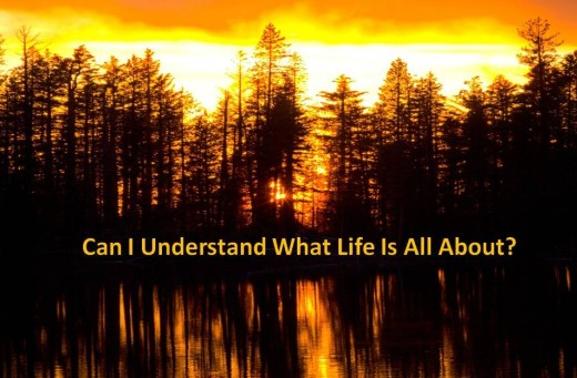 Find out what life is all about