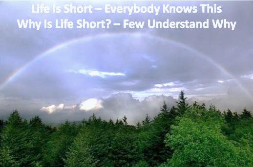 Life short rainbow