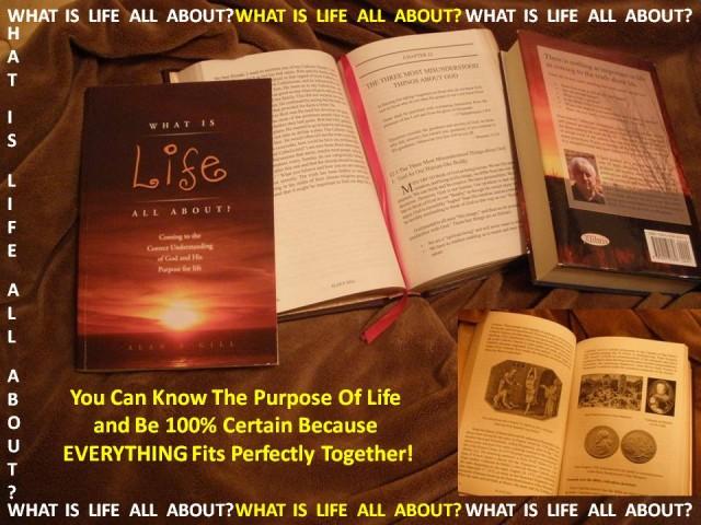 wilaa book described